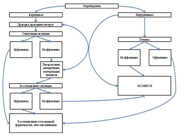 Алгоритм обследования при отсутствии овуляции