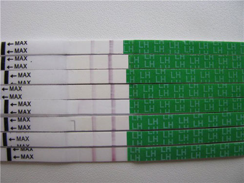 test-na-ovulyac