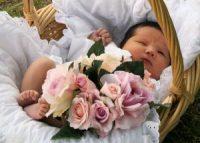 Младенец, корзина, цветы
