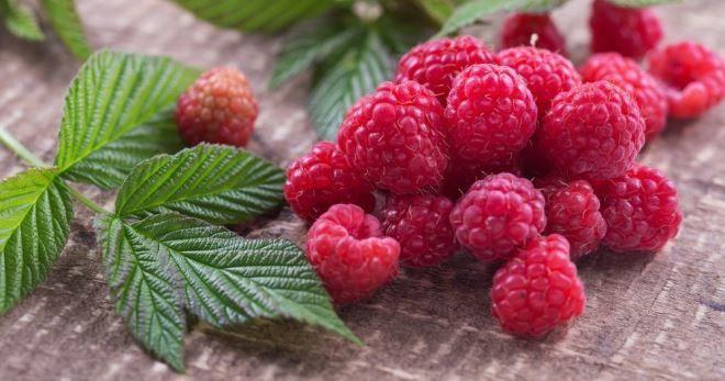 Малина при грудном вскармливании – можно ли ягоду, и как правильно ее кушать?